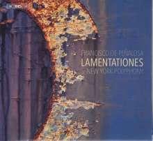 Francisco de Penalosa (1470-1537): Lamentationes, Super Audio CD