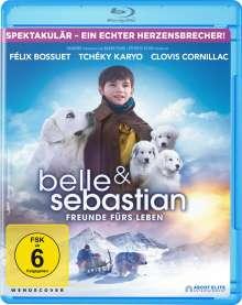 Belle und Sebastian 3 - Freunde fürs Leben (Blu-ray), Blu-ray Disc