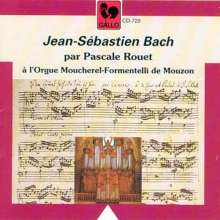 Johann Sebastian Bach (1685-1750): Acht kleine Präludien & Fugen BWV 553-560, CD