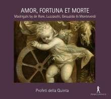 "Italienische Madrigale ""Amor,Fortuna et Morte"", CD"