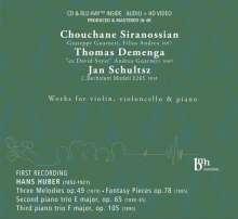 Hans Huber (1852-1921): Klaviertrios Nr.2 & 3 opp.65 & 105, CD