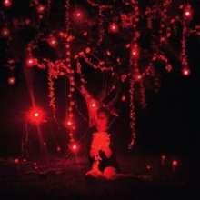 Sophie Hunger: The Danger Of Light, 2 LPs und 1 CD