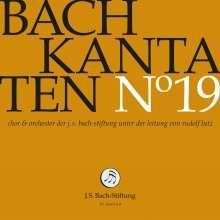 Johann Sebastian Bach (1685-1750): Bach-Kantaten-Edition der Bach-Stiftung St.Gallen - CD 19, CD