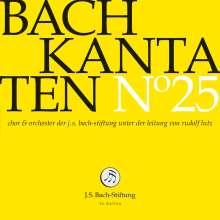 Johann Sebastian Bach (1685-1750): Bach-Kantaten-Edition der Bach-Stiftung St.Gallen - CD 25, CD