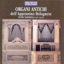 Liuwe Tamminga,Orgel, CD