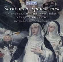 Canticum Canticorum nei Conventi, CD