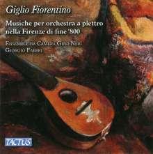 Ensemble da Camera Gino Neri - Giglio Fiorentino, CD