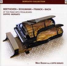 Mirco Bruson Plays a Doppio Borgato (Pedalflügel), CD