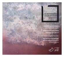 Arnold Schönberg (1874-1951): Verklärte Nacht op.4 für Streichsextett, CD