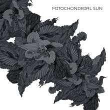 Mitochondrial Sun: Mitochondrial Sun, CD