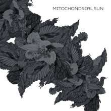 Mitochondrial Sun: Mitochondrial Sun, LP
