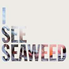The Drones: I See Seaweed, CD