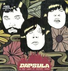 Capsula: In The Land Of Silver Souls, LP