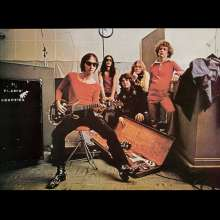 The Flamin' Groovies: Teenage Head (180g) (Limited-Deluxe-Edition), LP