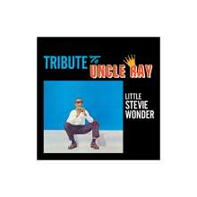 Stevie Wonder (geb. 1950): Tribute To Uncle Ray / The Jazz Soul Of Little Stevie, CD