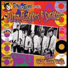 Fuzz, Flaykes And Shakes (180g) (Limited Edition) (Red Vinyl), LP