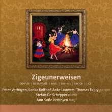 """Kammermusik mit Piccolo-Flöte """"Zigeunerweisen"""", CD"""
