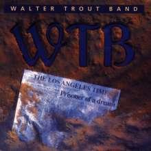 Walter Trout: Prisoner Of A Dream, CD