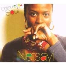 Netsayi: Chimurenga Soul, CD
