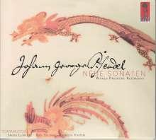Johann Georg Pisendel (1687-1755): Violinsonaten, CD