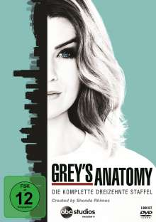 Grey's Anatomy Season 13, 6 DVDs