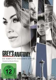 Grey's Anatomy Season 14, 6 DVDs