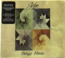 Gotye: Making Mirrors (CD + DVD), CD