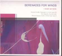 I Solisti del Vento - Serenades for Wings, CD