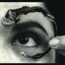 Mr. Bungle: Disco Volante (180g), LP