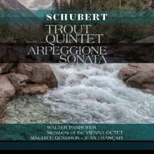 Franz Schubert (1797-1828): Arpeggione - Sonate D.821, LP