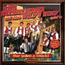 Luis Wechselberger und seine wild'n Hund': Für jeden a Stückl, CD