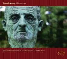 Anton Bruckner (1824-1896): Werke für Männerchor, CD