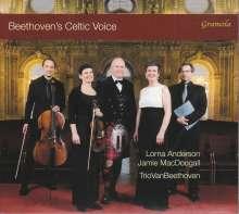 Ludwig van Beethoven (1770-1827): Irische, walisische & schottische Volkslieder, CD
