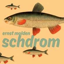 Ernst Molden: Schdrom (180g), LP