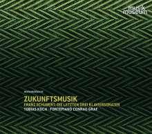Franz Schubert (1797-1828): Klaviersonaten D.958-960, 3 CDs