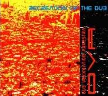 Dub Vexxxation Arkestra: Recreation Of The Dub, 2 CDs
