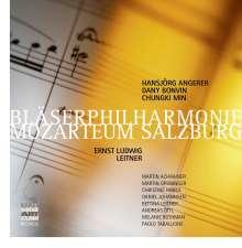 Ludwig Ernst Leitner (geb. 1943): Musik für Bläsersymphonik, 6 CDs