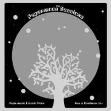 Papir Meets Electric Moon: The Papermoon Sessions: Live At Roadburn 2014 (180g), LP