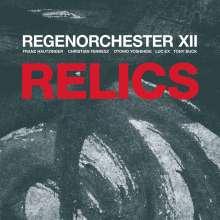Regenorchester XII: Relics: Live Klangspuren Festival Österreich 2019, LP