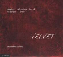 Velvet - Ensemble & Organ Music from 17th Century Austria, CD