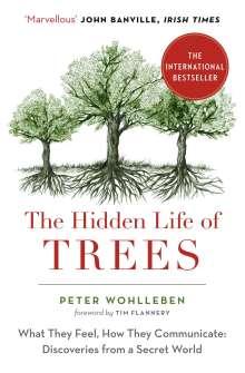 Peter Wohlleben: The Hidden Life of Trees, Buch