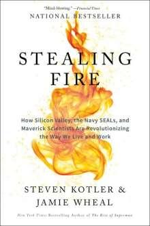 Steven Kotler: Stealing Fire, Buch