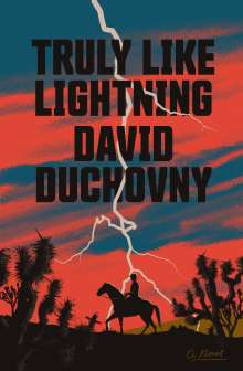 David Duchovny: Truly Like Lightning, Buch