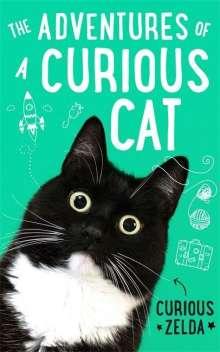Curious Zelda: The Adventures of a Curious Cat, Buch