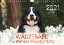 Sonja Brenner: WAUZEBAER the Bernese Mountain Dog (Wall Calendar 2021 DIN A4 Landscape), Kalender