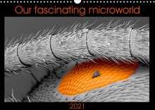 Nathalie Braun: Our fascinating microworld (Wall Calendar 2021 DIN A3 Landscape), Kalender