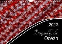 Henry Jager: Designed by the Ocean (Wall Calendar 2022 DIN A4 Landscape), Kalender
