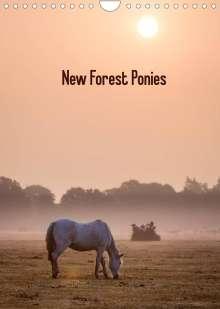 Kerto Koppel-Catlin: New Forest Ponies (Wall Calendar 2022 DIN A4 Portrait), Kalender