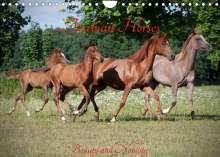 Angela Muenzel-Hashish: Arabian Horses - Beauty And Nobility (Wall Calendar 2022 DIN A4 Landscape), Kalender