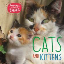 Annabelle Lynch: Animals and their Babies: Cats & kittens, Buch
